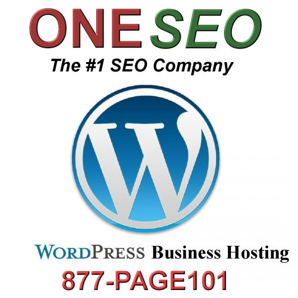 ONE SEO HOSTING