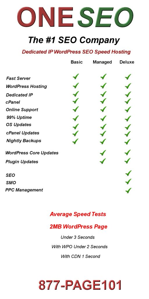 All in 1 SEO Hosting